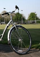 bike-hybrid-clapham